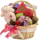 SWEET ARRIVAL GIRL GIFT BASKET in Bethesda, MD | ARIEL FLORIST & GIFT BASKETS
