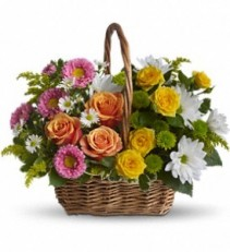 Sweet Tranquility Basket in Eau Claire, WI | 4 SEASONS FLORIST INC.