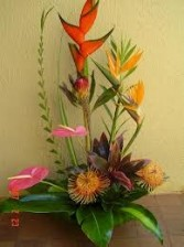 TA-12- Tropical flowers in a modern arrangement Flowers and colors may vary