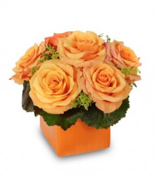 Tangerine Twist Rose Arrangement in Dickinson, TX | ROSE PETAL FLOWERS