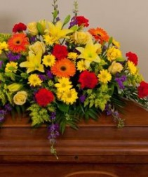 COLORFUL CONDOLENCES Half Casket Spray of  gerbera daisies, lillies, carnations, roses,  daisies,delphinium,   and more. more.