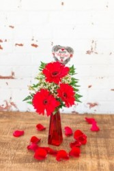The Averi  Valentines Day Gerberas