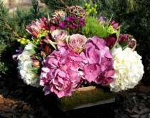 The Color Purple Low Arrangement