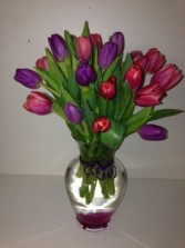 THE KISS OF TULIPS