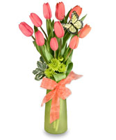 THOUGHTFUL TULIPS Arrangement in Bedford, NH | DIXIELAND FLORIST & GIFT SHOP INC.