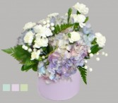 Timeless Devotion Hydrangea Arrangement