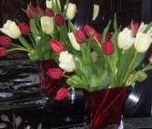 Timeless Tulips Fresh floral in Dallas, TX | MY OBSESSION FLOWERS & GIFTS
