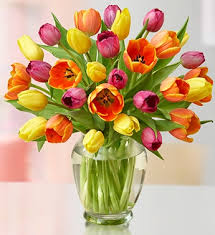 TIP TOE THRU THE TULIPS Vase Arrangement in Longview, TX | ANN'S PETALS