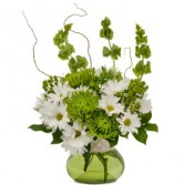 Dots and Daisies Fresh Flower Arrangement