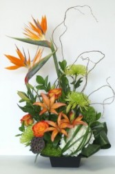 Tropical Arrangement TROP03 in Edmonton, AB | JANICE'S GROWER DIRECT