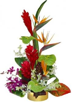 TROPICAL DELIGHTS ARRANGEMENT in Rockville, MD | ROCKVILLE FLORIST & GIFT BASKETS