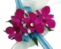 Tropical Isle C47-6 Orchid Corsage