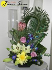 Tropical-Protea Delight SOLD OUT!