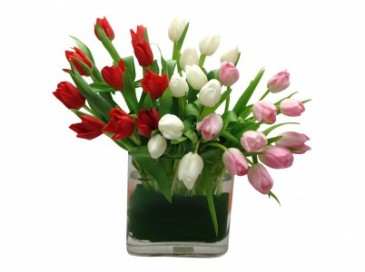 Tulip Garden Arrangement
