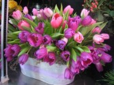 Tulip Extravaganza Spring Arrangement in Houston, TX | AJ'S URBAN PETALS