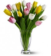 Colorful Tulips Floral Bouquet