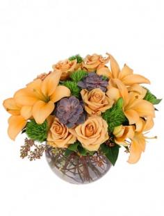 Tuscan Sun Flower Arrangement in Hanna, AB | COUNTRY CHARMS FLOWERS & GIFTS