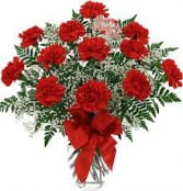 Valentines Day  Red Carnations