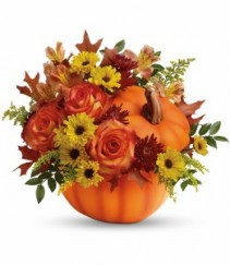 Warm Fall Wishes Bouquet T13H110A