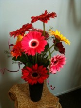 We Love Gerbera in Hutchinson, KS | Don's Custom Floral