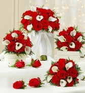 Wedding package in Holiday theme Red & White