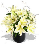WHITE LILY  SPRING  CENTERPIECE in Rockville, MD | ROCKVILLE FLORIST & GIFT BASKETS