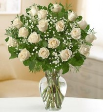 White Roses, Recruitment Special  12, 18 or 24 Roses