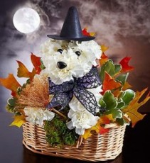 Witchy Pooch from 1800flowers Halloween Arrangement
