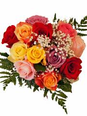 Wrapped Assorted Colors Bouquet  One Dozen Mixed Roses Long Stem 50 & 60 cm