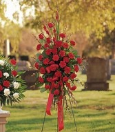 RED REGARDS SPRAY Item # TF206-2 in Conroe, TX | FLOWERS TEXAS STYLE