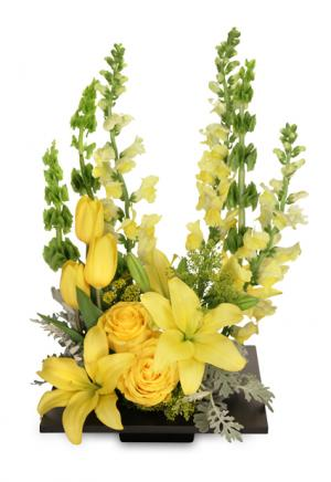YOLO Yellow Arrangement in Indiantown, FL | ALL ABOUT FLOWERS