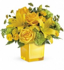 You Are My Sunshine fresh flowers