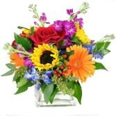 YOU'RE MY EVERYTHING in Edison, NJ | E&E FLOWERS AND GIFTS
