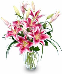 The Beginning Of May Is Always Such A Gorgeous Time Year Flowers Are Back Sun Warm Weather Wedding Season