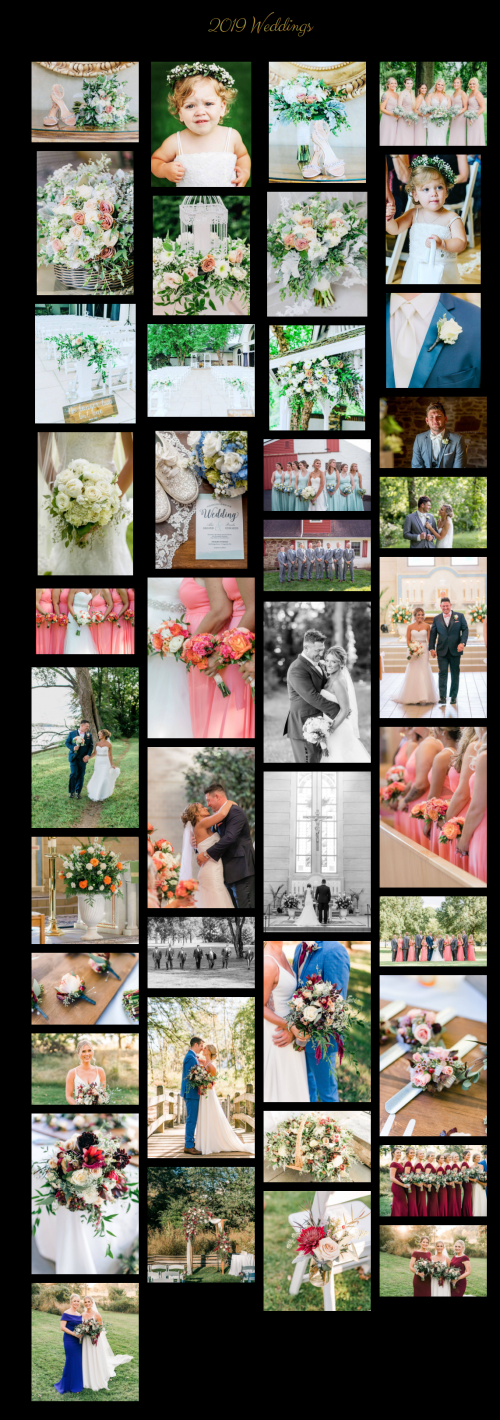 Wedding Images from Little Cottage Gardens
