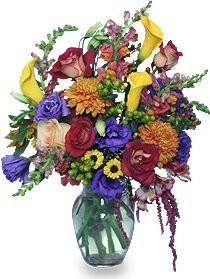 Make Ariel Bethesda Florist & Gift Baskets your first choice for floral and gift items for any occasion!