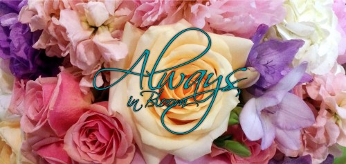 About us always in bloom saint louis mo because every day looks better with flowers from always in bloom mightylinksfo