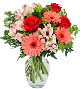 About us allans flowers calgary ab from a bouquet expressing love and happiness to the requirements of a large social function we can service your floral needs allans flowers specializes mightylinksfo