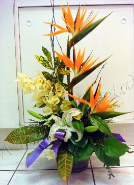 About us a touch of petals calgary ab at a touch of petals we are more than just your average florist speedy reliable deliveries and customer care thats beyond compare these are just two mightylinksfo