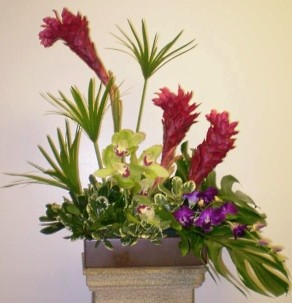 About us foothills floral gallery phoenix az were a local phoenix arizona florist with a lovely variety of fresh flowers and creative gift ideas to suit any style or budget mightylinksfo