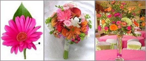 Set Includes Anenomie Corsages And Bouts Package