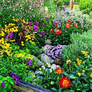 About us d jour of kensington gardens kensington ca d jour of kensington gardens mightylinksfo