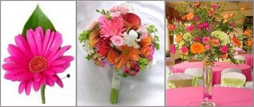 Wedding Flowers From APPLE BLOSSOM FLORIST
