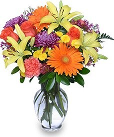About us r flowers harrison township mi at r flowers were proud to offer the finest floral arrangements and gifts in harrison township mt clemens and surrounding cities of harrison township mightylinksfo