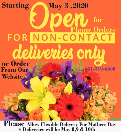 Posh Floral Designs Delivers Beautiful Fresh Flowers Daily Premium