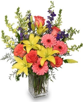 Proudly serving the area since 1987, we're a local Lancaster, California florist with a lovely variety of fresh flowers and creative gift ideas to suit any ...