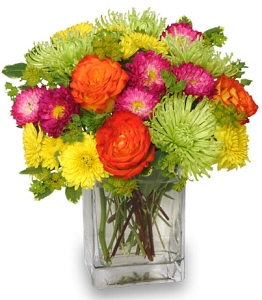 About us park floral company bronx ny when you need something special like fresh flowers to express sympathy mightylinksfo