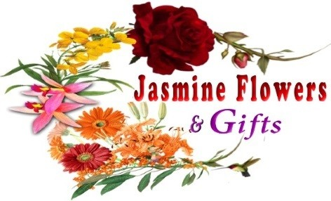 Colorado Springs Florist Colorado Springs Co Flower Shop Jasmine