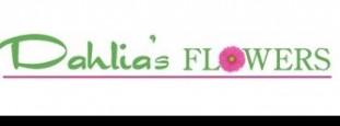 DAHLIA'S FLOWERS