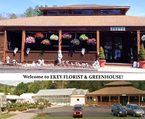 About Us Ekey Florist Greenhouse Warren Pa